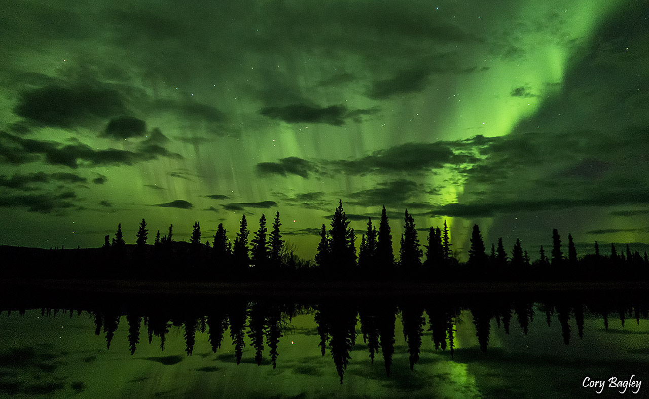 Northern Lights at Otto Lake. Healy, Alaska
