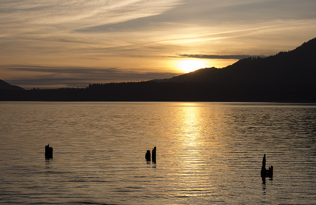 Lake Quinault in Olympic National Park. Sunset.