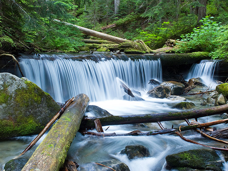 Surprise Creek in the Snoqualmie National Forest
